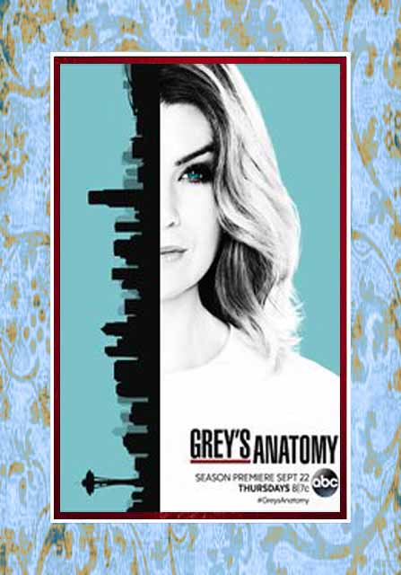 Greys Anatomy / Grey's Anatomy - Season 15