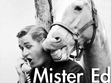 Mr. Ed / Mister Ed - Complete Series