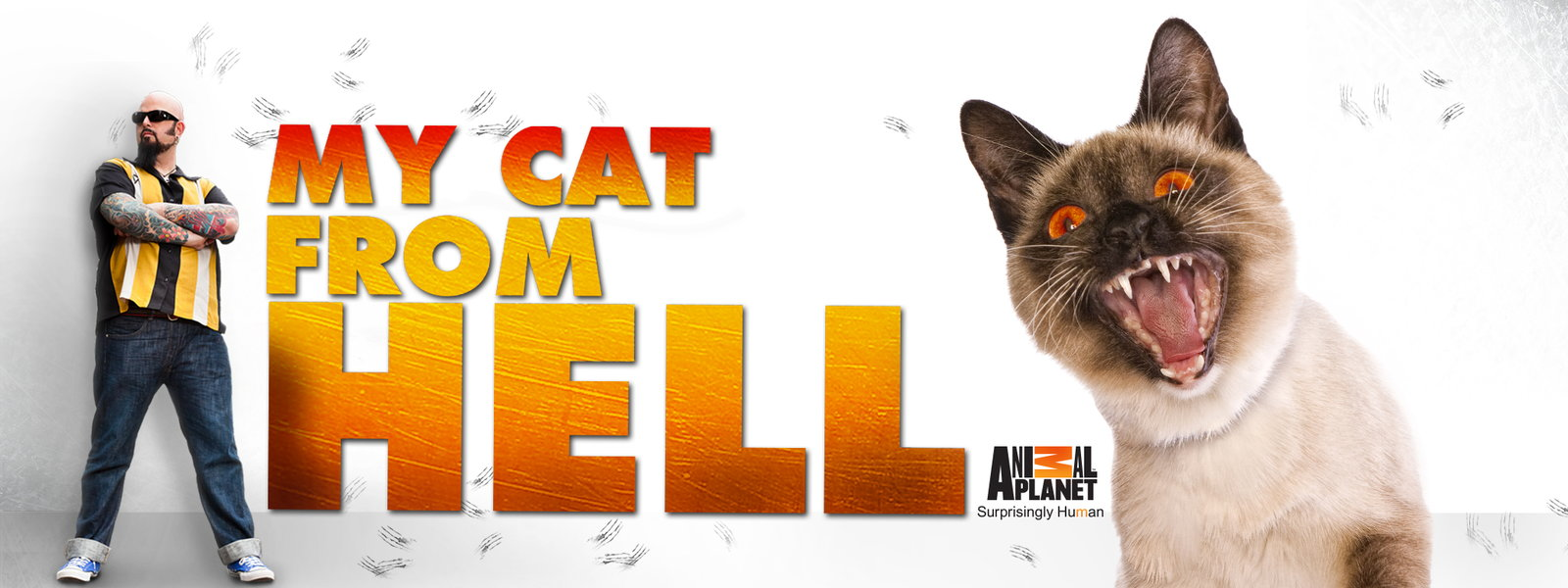 My Cat From Hell - Seasons 1-5 - Click Image to Close